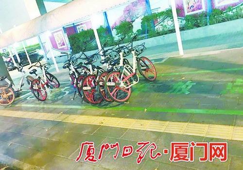 厦门岛内共享单车整治工作展开 岛内共享单车数量将减半