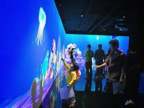 日本知名展览teamLab展览在厦开启首个中国常设馆