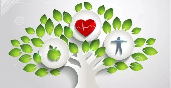 福建省在全国职业健康监管监察工作会议作交流发言