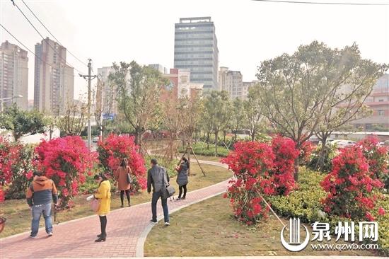 """泉州市区又增一批临街""""口袋公园"""" 便民又美观"""