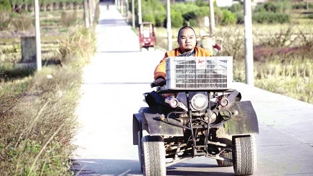 龙岩一瘫痪小伙坐板车创业 带乡亲致富
