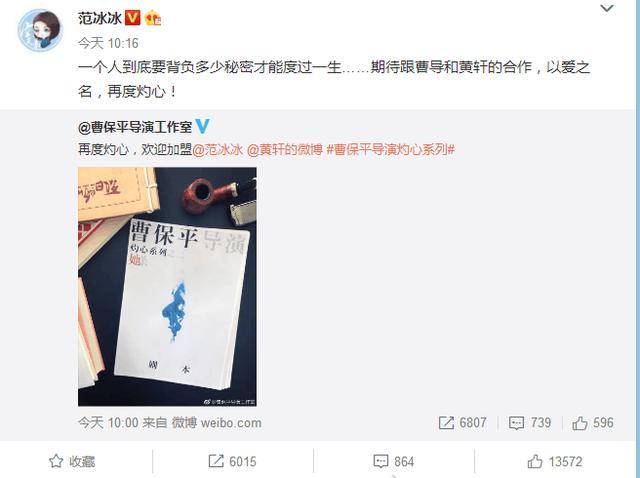 范冰冰确定出演曹保平新作《她杀》,男一号竟是他?