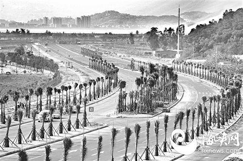 """福州琅岐环岛路今日闭合通车 生态旅游岛迎来发展""""新时代"""""""