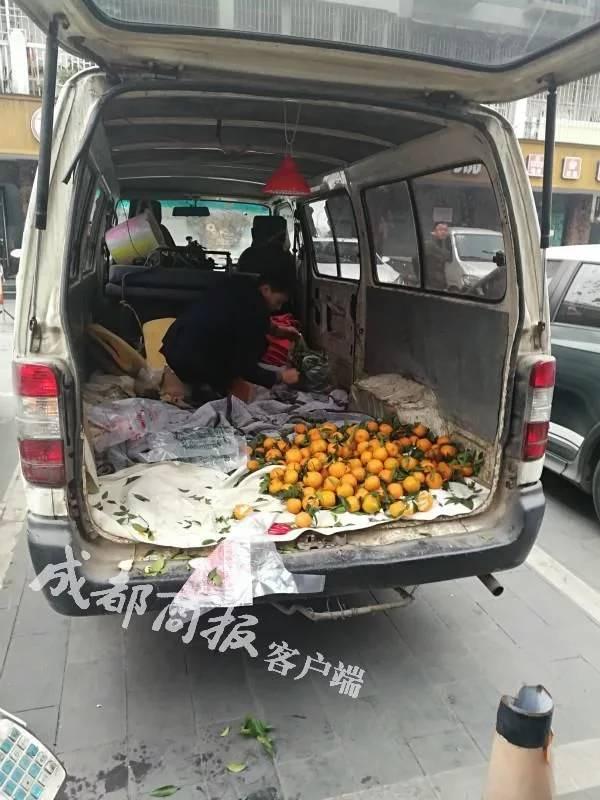 小贩开非法改装车卖橘子被查,交警1小时帮忙卖光500斤
