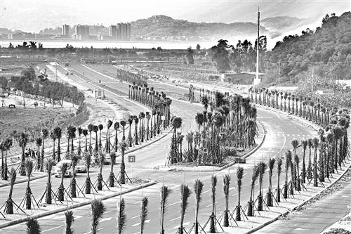 """福州琅岐环岛路1月1日闭合通车 将成""""国际生态旅游岛""""风景线"""