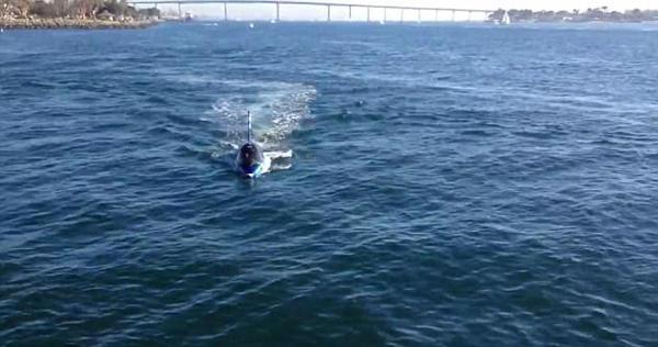 美国西海岸现高仿真鲨鱼潜水器 潜水起跳样样行