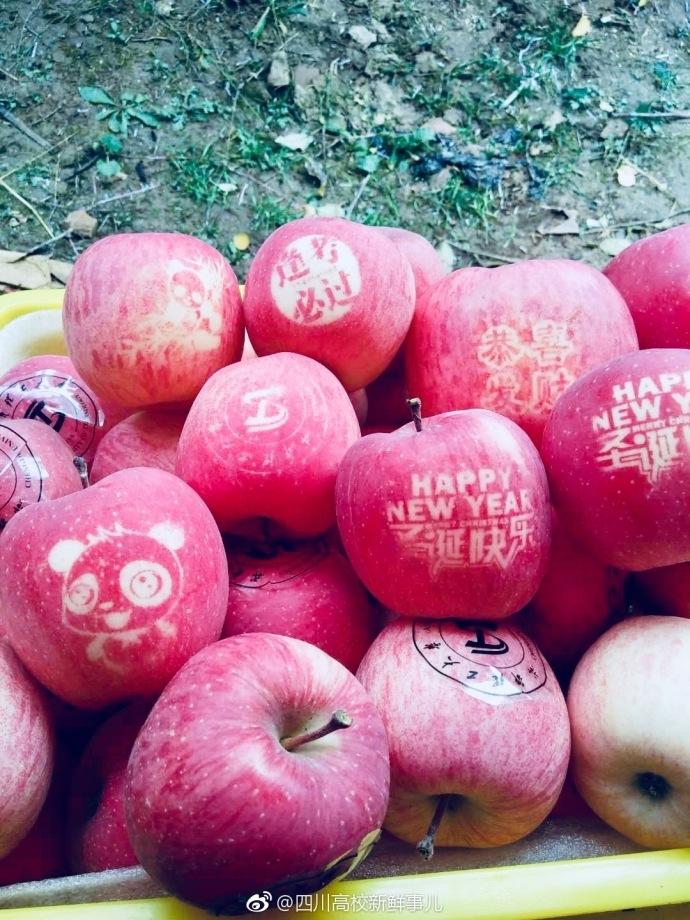 """高校毕业生庆祝母校入选""""双一流"""" 种出校徽苹果"""