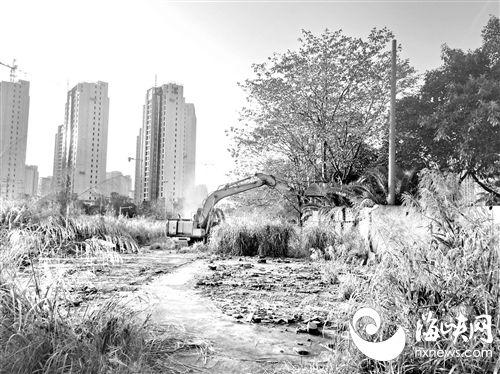 福州六处收储地 将铺草种树