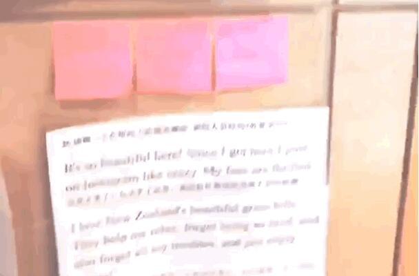 李冰冰英语为什么那么好:厕所贴满英语单词