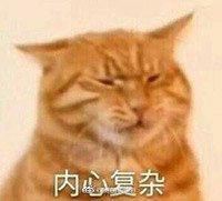 壁纸 动物 猫 猫咪 小猫 桌面 200_181图片