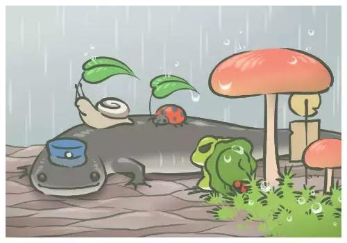 下雨了,所有的小动物,都需要躲雨,青蛙的朋友:梅梅(蜗牛)和七星瓢虫