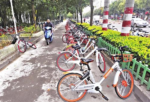 省两会代表、委员建言:集纳多方智慧 管好共享单车