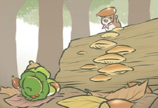 旅行青蛙最稀有的6张照片,网友羡慕:我的蛙儿子也太糊弄我了