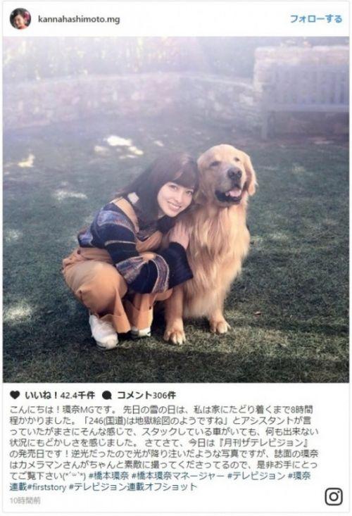 千年一张的写真!桥本环奈现状:与狗狗合照被粉丝赞千年一遇