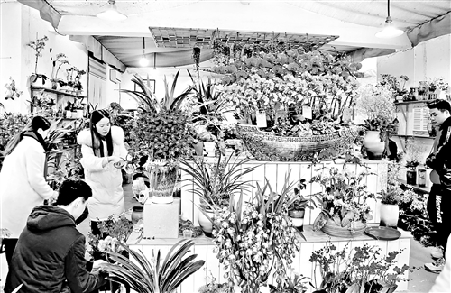 福州花卉市场升温 高端主打兰花