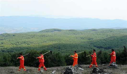 """贵州沙子坡林场:三代护林员守护一片""""林海"""""""