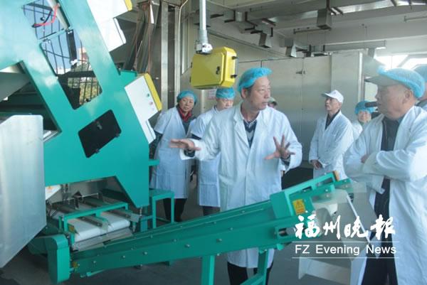 专家献策 发展福州茉莉花茶,提升花香利用率