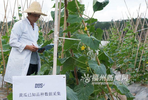 农业部植物新品种测试福州分中心加紧建设