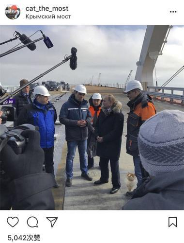 """俄罗斯总统普京参观克里米亚大桥 与桥梁""""监工猫""""同框(图)"""