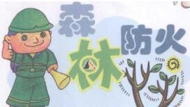 龙岩市永定区政府实施森林防火工作责任奖罚