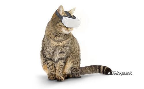 国外推出喵星人专用VR 设备 避免喵星人自己跑丢