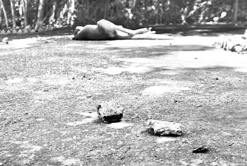 福州动物园:为看袋鼠跳 游客抛石砸