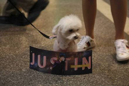 Justin机场摸狗是怎么回事?Justin机场摸的是什么狗?
