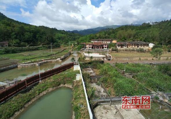 莆田仙游书峰乡兰石村:规划引领 打响名贵兰石品牌