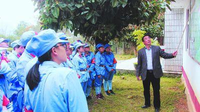 """龙岩漳平西山村:农村""""领头雁"""" 领全村齐飞"""
