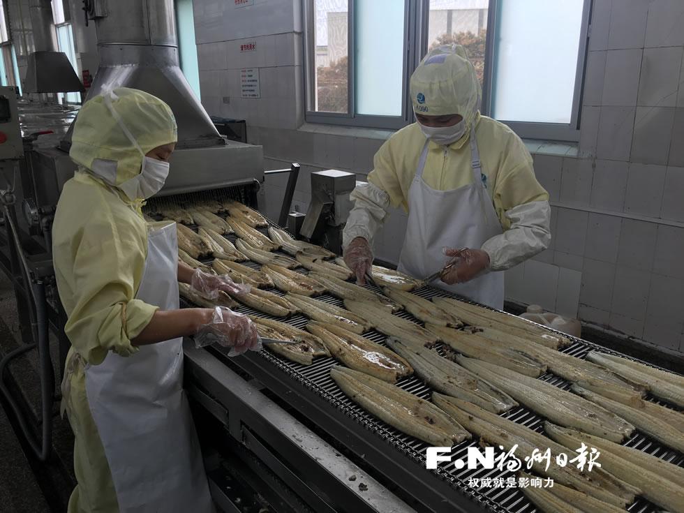 福州烤鳗热销国外市场 三次检测确保药残达标