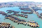 福建海域正式进入伏季休渔期 最严执法行动全覆盖开启