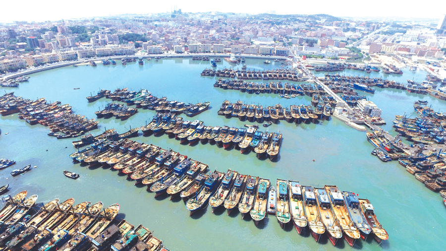 当天,福建省海洋与渔业厅在石狮祥芝中心渔港举行2018年海洋伏季休渔