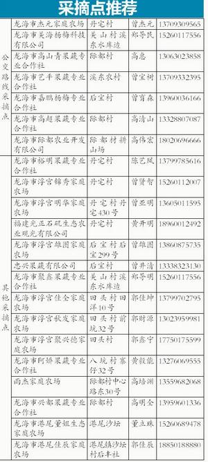龙海首届杨梅文化节暨第二届美食文化节昨开幕