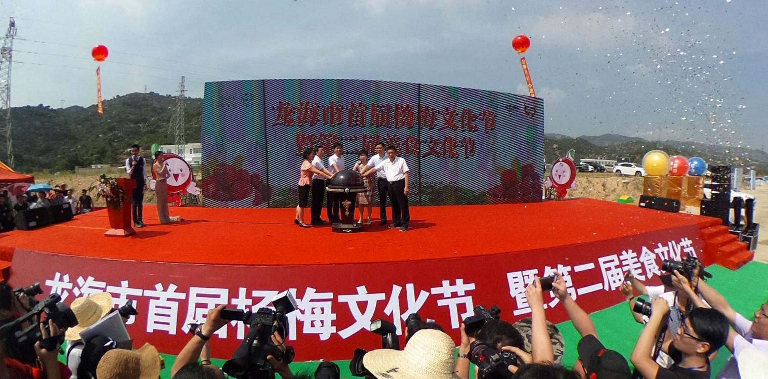 红色风暴来袭!漳州龙海首届杨梅文化节今日甜蜜开幕!