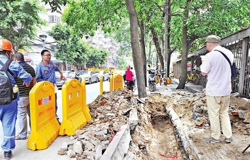 """福州古田支路:道路改造部门施工不同步 反复开挖""""掏空""""行道树"""