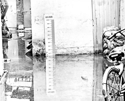 水漫福州金山公园 浮萍盖过荷塘