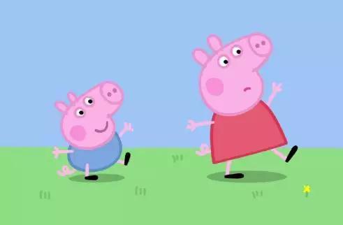 一群小猪可爱照片
