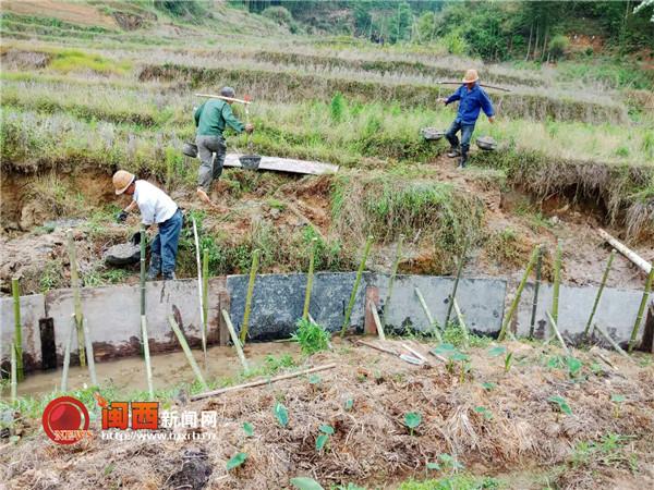 连城县姑田镇:多举措抗旱保障中稻田灌溉水源