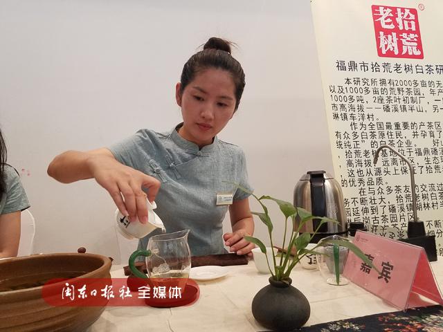 """福鼎举办""""斗茶大赛""""36家白茶企业""""打擂台"""""""