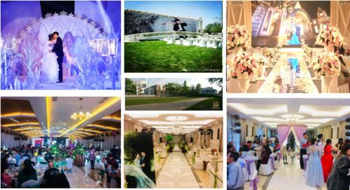 """公园158国际婚礼基地:520婚礼""""大满贯"""""""