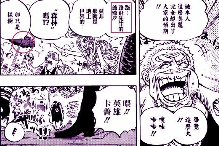 海贼王漫画905话:白星颜值身材不是盖的 摩根斯看到后两眼发直