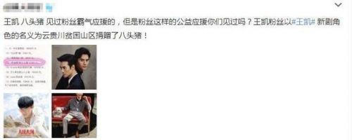 王凯粉丝捐八头猪,是捐给谁的?网友评论瞬间炸了:莫名搞笑