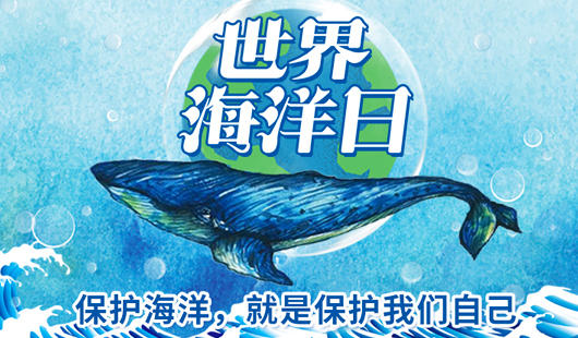 世界海洋日丨保护海洋,就是保护我们自己