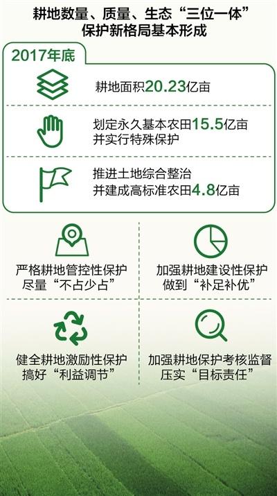 数量、质量、生态协同 耕地保护新格局基本形成