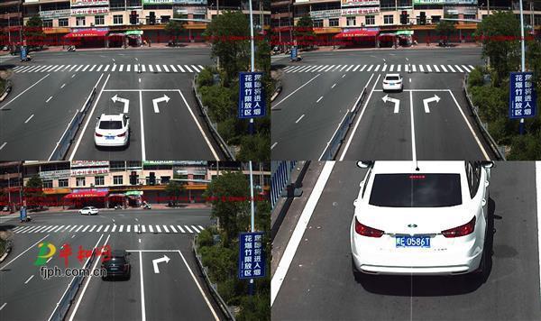 刚刚!漳州平和交通违法车辆曝光,有你的爱车吗…
