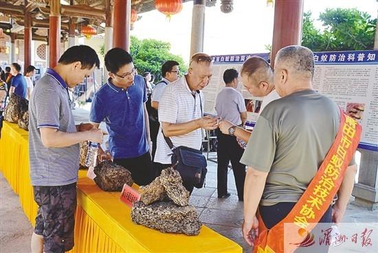 全国白蚁防治实操和应用培训在莆田举行