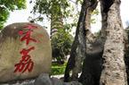 荔熟时节,福州城中古荔还好吗?