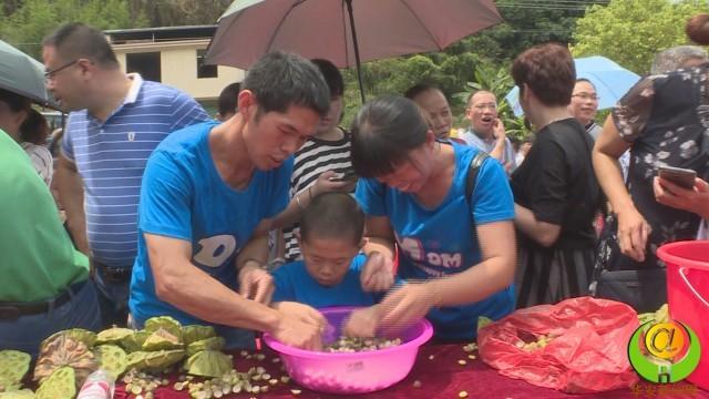 漳州岛濑首届荷花节举行剥莲子趣味比赛