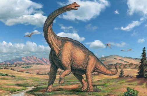 巨型恐龙遗骸出土是怎么回事?现场照片曝光太震撼!