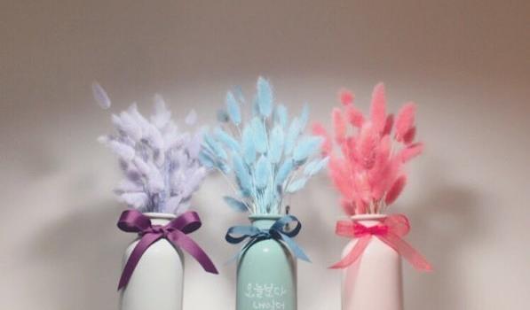除了做成捧花还可以这样装饰?梦幻兔尾草的8种妙用